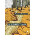 Niepoznany Nieznajomy (e-book)