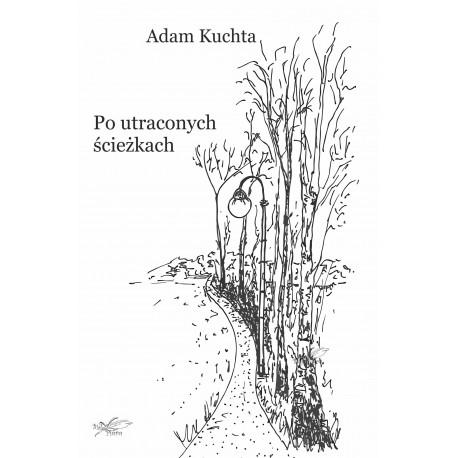 Po utraconych ścieżkach(e-book format pdf)