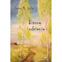 BARWY I ODCIENIE - wiersze i eseje (e-book- format pdf)