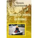 Zabiorę Cię jesienią do Brukseli (e-book)